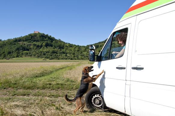 Dr. Katja Küther in der mobilen Tierarztpraxis