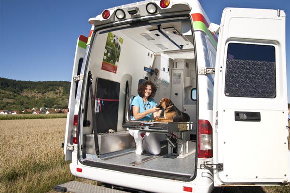 Mobilen Tierarztpraxis Dr. Katja Küther